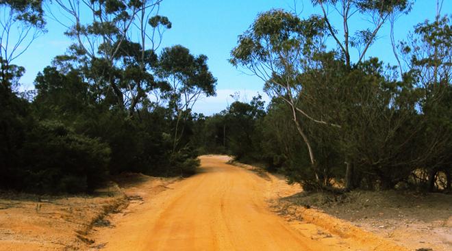 Austrálska buš